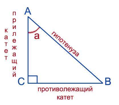 В прямоугольном треугольнике Найти sin(a); <i>тангенс угла это отношение прилежащего катета</i> cos(a); tg(a); ctg(a)