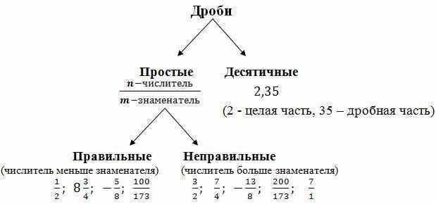 Что такое дробь в математике
