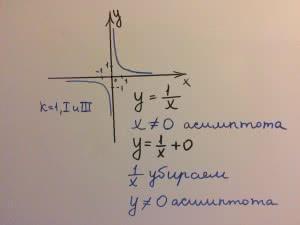 гипербола y=1/x