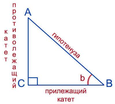 В прямоугольном треугольнике Найти sin(b); cos(b); tg(b); ctg(b)