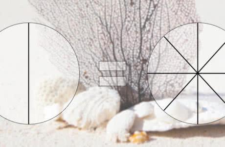 Основное свойство дроби или рациональных чисел